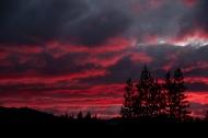 Yosemite-7802